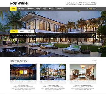 Ray White, Website Design
